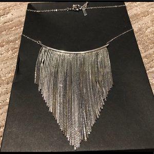 Topshop Silver Fringe Necklace